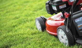 Best-petrol-Lawn-Mowers