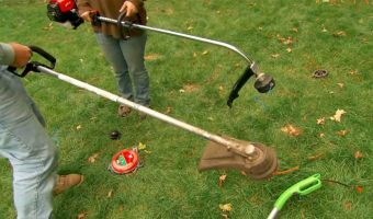 Best Grass Strimmer