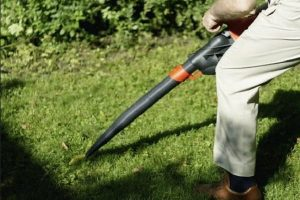5 Best Electric Leaf Blower
