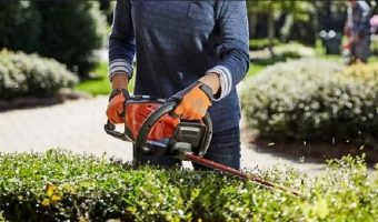 5 Best Hedge Trimmer For Thick Branches