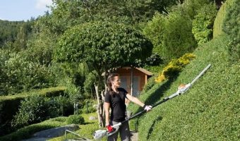 5 Best Long Reach Hedge Trimmer UK