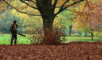 5 Best Petrol Leaf Blowers