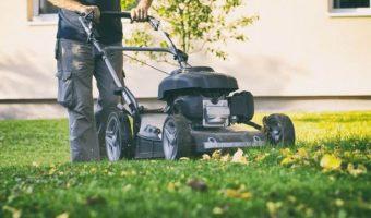 5 Best Mulching Mower UK 2019